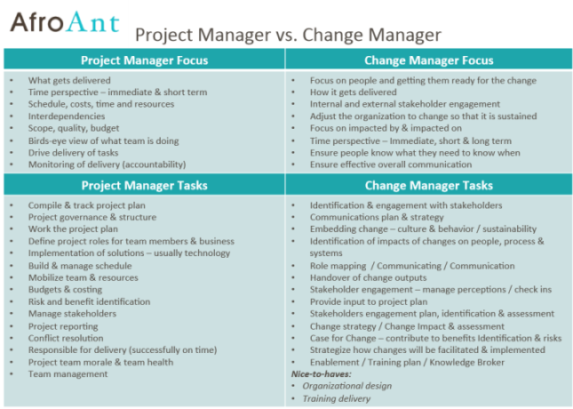 Change manager vs Project manager skills